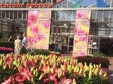 Plantarium 2016 was cool