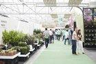 Plantarium will progress down the road taken