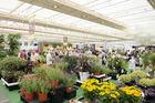 Plantarium presenteert thema voor 2020