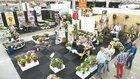 Plantarium en GROEN-Direkt versterken totaalbeeld voor kwekers