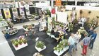 Plantarium and GROEN-Direkt enhance the overall picture for growers