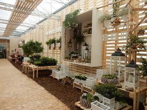 New direction for Plantarium