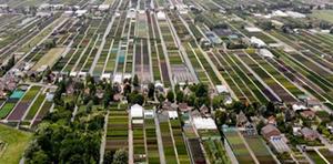 Greenport Boskoop supports growers' square at Plantarium